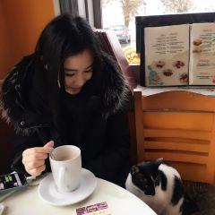 Desiderio Cafe Snack Bar用戶圖片