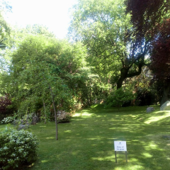 花園廣場開放周末用戶圖片