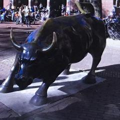 舊證券交易所用戶圖片