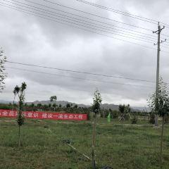 農家鄉村地鍋雞用戶圖片