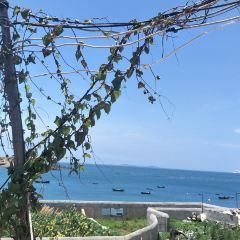 江尾度假村用戶圖片