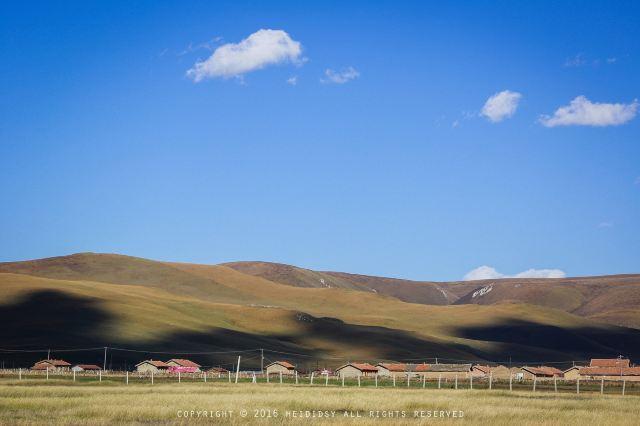 德令哈尕海國家濕地公園