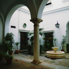 트리아나 지구 여행 사진