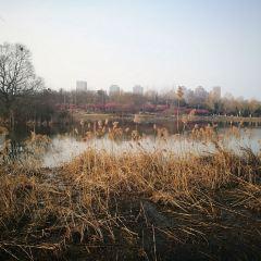Hefeixikuo Park User Photo