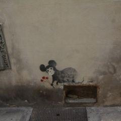 梵古徒步用戶圖片
