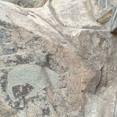 흑산 마애석각 여행 사진