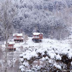 Huaqiaocun User Photo