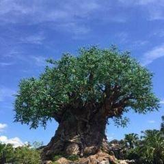 迪士尼動物王國用戶圖片