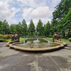 伯爾尼玫瑰園用戶圖片