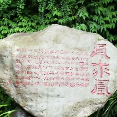 Linqiong Ancient City User Photo