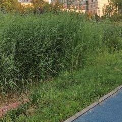 Daqinghe Sceneic Area User Photo