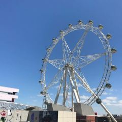 墨爾本之星觀景摩天輪用戶圖片