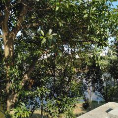 饒河源國家濕地公園用戶圖片