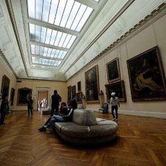 布德爾美術館用戶圖片