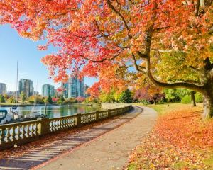 12 Coolest Canada Cities Well Worth Visiting