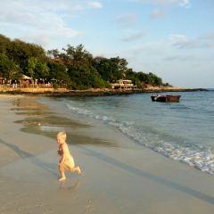 奧派海灘張用戶圖片