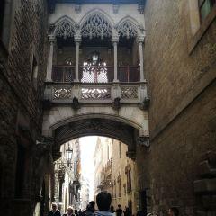 巴塞羅那大教堂用戶圖片