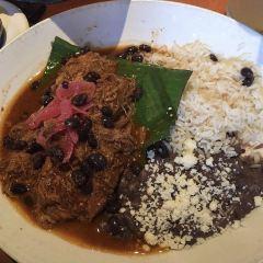 Meso Maya用戶圖片