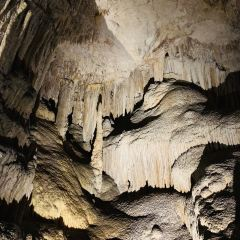 Mammoth Cave User Photo