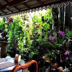 Natural Restaurant User Photo
