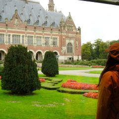 Peace Palace User Photo