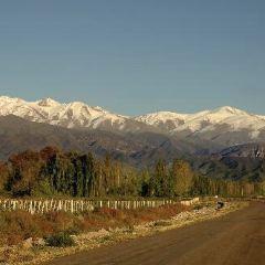 Valle de Uco User Photo