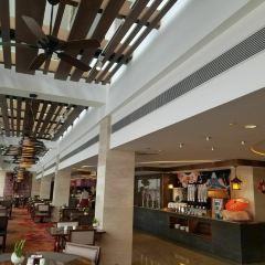 白天鵝賓館流浮閣咖啡廳張用戶圖片