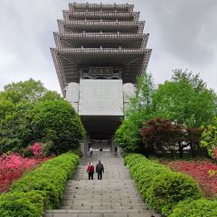 臨平公園用戶圖片