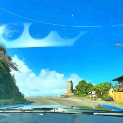 호놀룰루 여행 사진