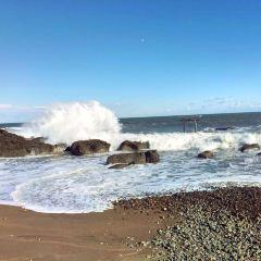 大洗海岸用戶圖片