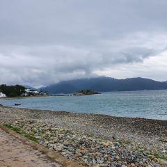 남이섬 여행 사진