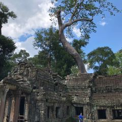 Ta Prohm User Photo