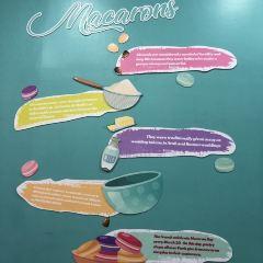 The Dessert Museum User Photo