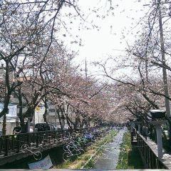 Yeojwacheon Stream User Photo