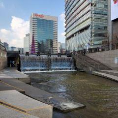 清溪川用戶圖片