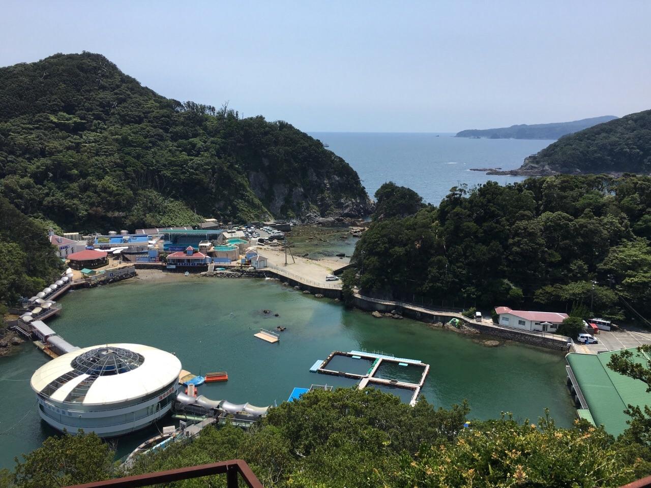 海中 水族館 下田