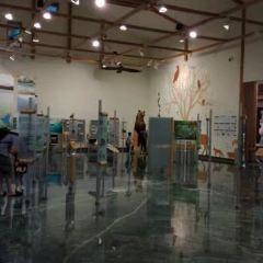 Eco Museum Center User Photo