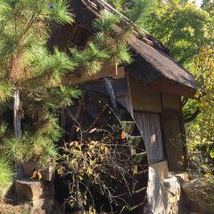 Shikoku Mura User Photo