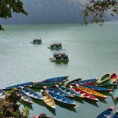 湖心島用戶圖片