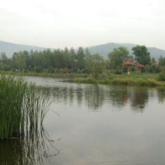 細水公園用戶圖片