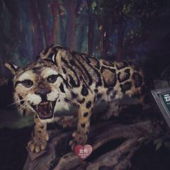 Mangshan Natural Museum User Photo