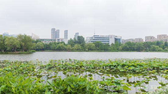 蜀峰灣體育公園