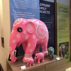 Elephant Parade House User Photo