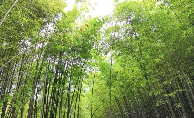 Baishui Waterfall