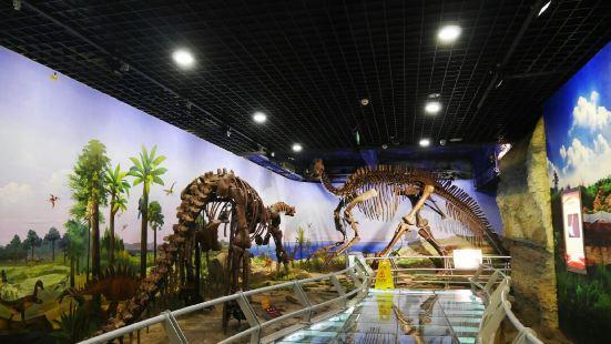 Heilongjiang Geological Museum