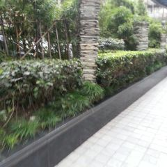 Kaisaniemi Botanic Garden User Photo