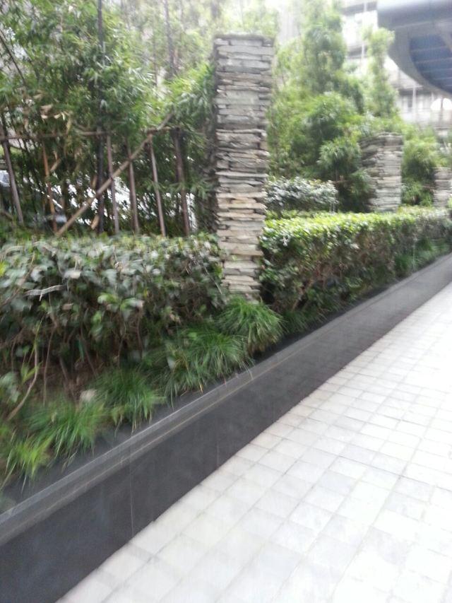 카이사니에미 식물원