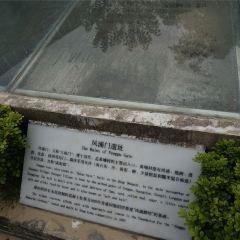 Fengpu Park User Photo