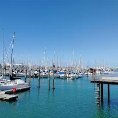 Auckland Sailing Club User Photo