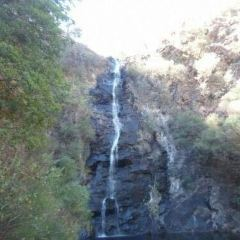 Waterfall Gully User Photo